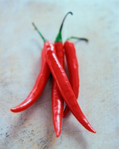 Red chilli peppers  credit: Marie-Louise Avery / thePictureKitchen / TopFoto, Image: 81940293, License: Rights-managed, Restrictions: , Model Release: no, Credit line: Profimedia, thePictureKitchen