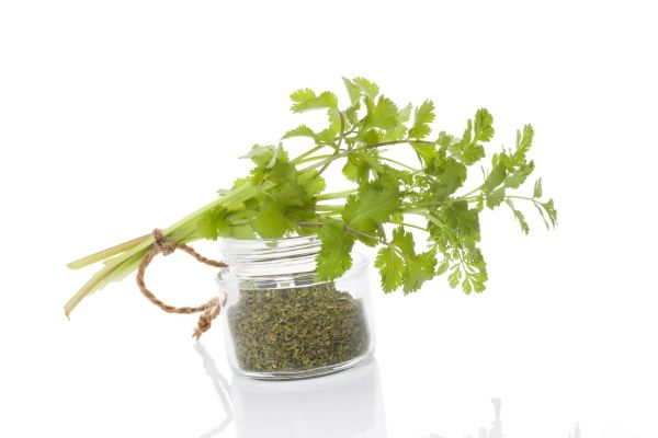 Fresh cilantro and dry coriander spice in glass jar isolated on white background. Culinary healthy aromatic herbs. Culinary arts., Image: 253303983, License: Rights-managed, Restrictions: , Model Release: no, Credit line: Profimedia, Martina Kováčová - com.ilustracni
