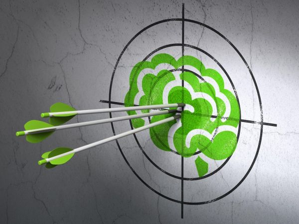 Success Science concept: arrows hitting the center of Green Brain target on wall background, Image: 262120734, License: Royalty-free, Restrictions: , Model Release: no, Credit line: Profimedia, Alamy