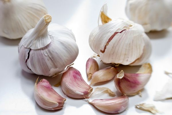 Garlic bulbs and cloves on white surface  credit: Marie-Louise Avery / thePictureKitchen / TopFoto, Image: 81918154, License: Rights-managed, Restrictions: , Model Release: no, Credit line: Profimedia, thePictureKitchen