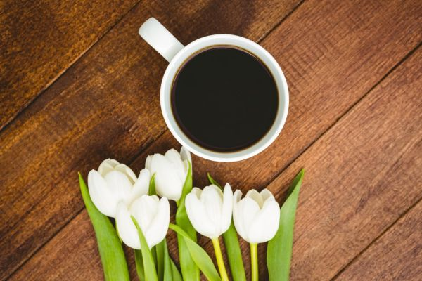 White flowers and a cup of coffee on wood desk, Image: 264311665, License: Royalty-free, Restrictions: , Model Release: no, Credit line: Profimedia, Wavebreak