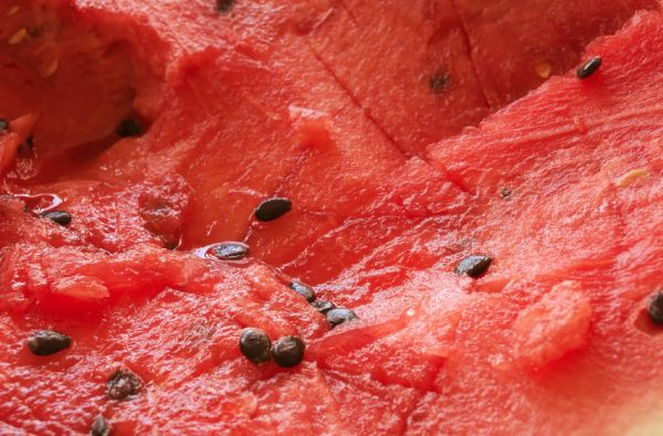 48770584 - natural healthy vegetarian foods fresh fruit background: red ripe watermelon chaotically sliced with watermelon seeds closeup view, photo with shallow depth of field