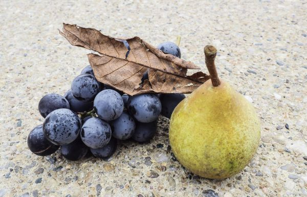 45981561 - pear and grape