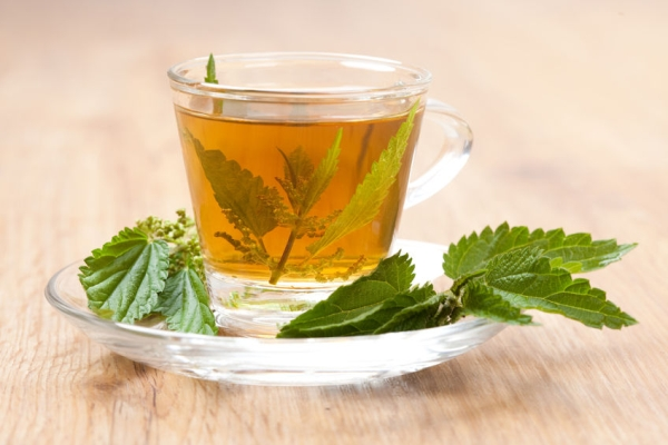 31826464 - teacup full of nettle tea, with stinging nettle inside herbal tea, on wooden floor,