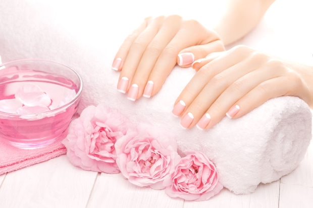 44182107 - beautiful french manicure with pink tea rose flowers
