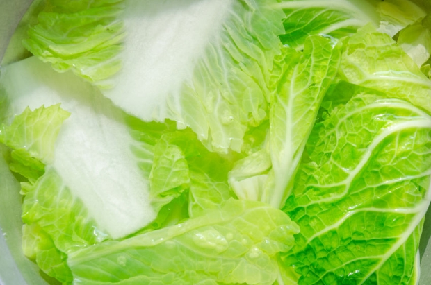 40874506 - close-up of chinese cabbage in water