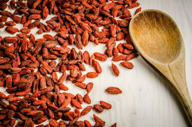 63180004 - goji berry dried, with spoon, closeup background