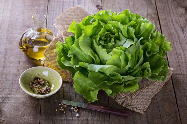 41726450 - single butter lettuce head, oil and seasoning over rustic wooden background