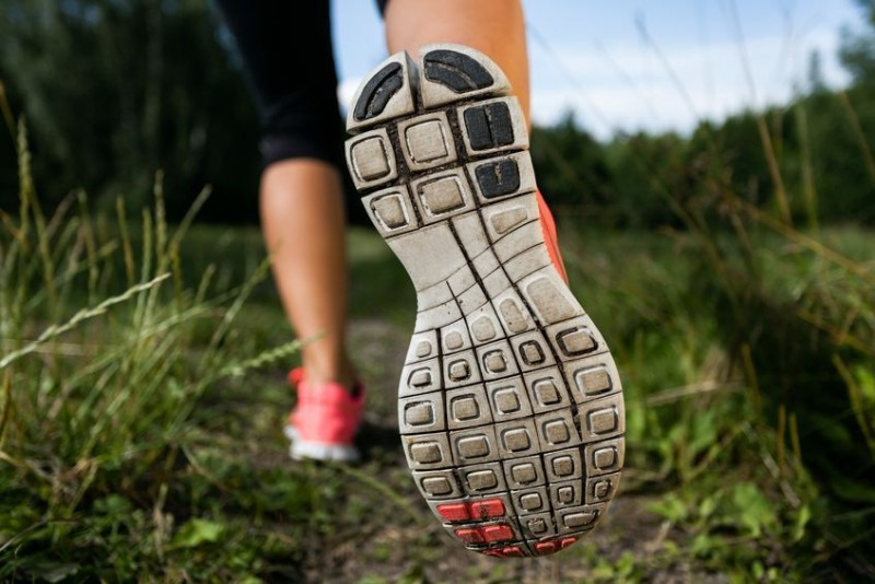 16221052 - walking or running shoes in forest, adventure and exercising in summer nature