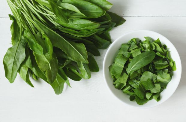 38963097 - raw fresh sorrel plant leafs in white bowl on rustic background. nutrition full of vitamines.