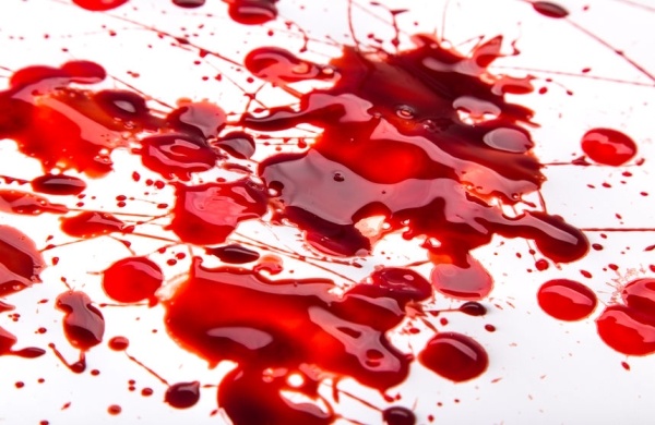 53125562 - splattered blood stains on white background, close-up.