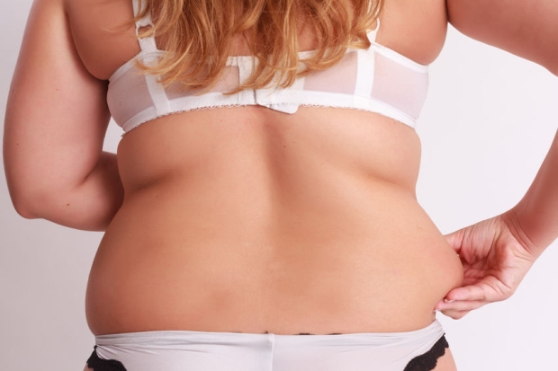 35356480 - woman pinches in the fat at the waist with back to camera.