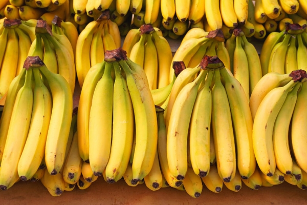 40695020 - bunch of ripened bananas at grocery store