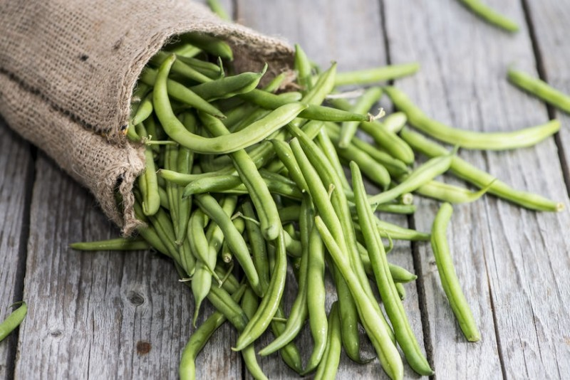 23428195 - portion of fresh green beans