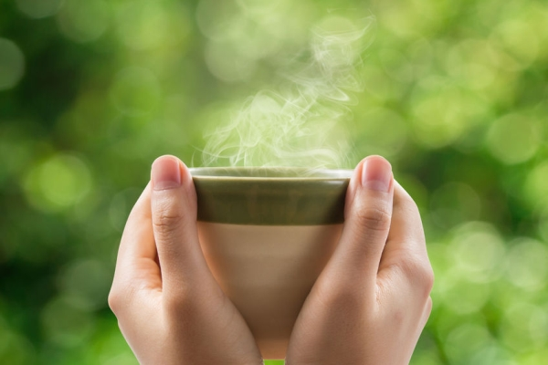 48017646 - hands holding tea cup on green bokeh background.