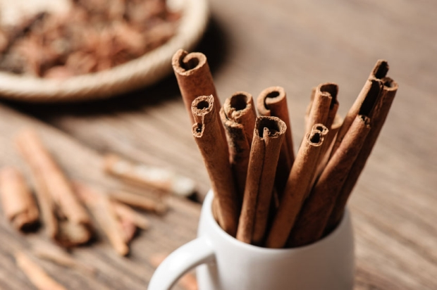 48789971 - fragrant cinnamon sticks in white cup