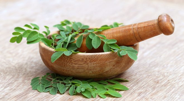 36582220 - moringa leaves with mortar and pestle