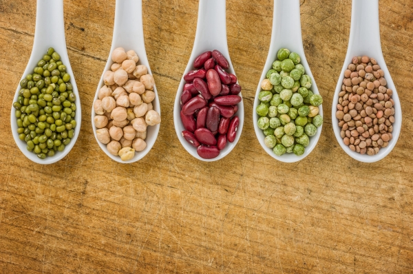 20243478 - various legumes on porcelain spoons
