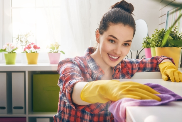 52899577 - beautiful young woman makes cleaning the house. girl rubs dust.