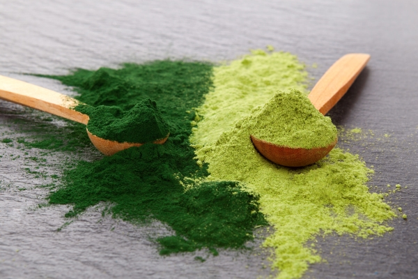 Adaptogen background. Ground powdered chlorella and barley top view. Superfood concept.